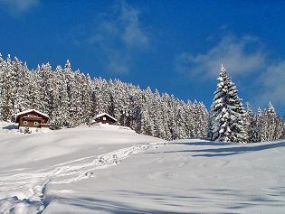 schneeschuh1